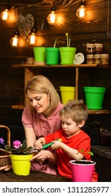Transplanting concept. Mother and son transplanting flower in new pot. Mother and child transplanting houseplant in black soil or dirt. Preparation for transplanting.