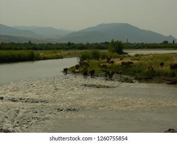 Transylvania, Romania / Romania - April 2016: River in Transylvania