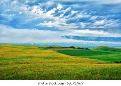Transylvanian landscape with wheat stalk and sunflower