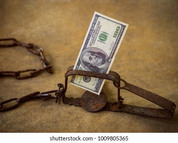 trap a target in which shut the banknote of 100 dollars