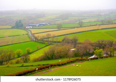 TRAP, UNITED KINGDOM - MAY 2 2016 : A foggy green farmland