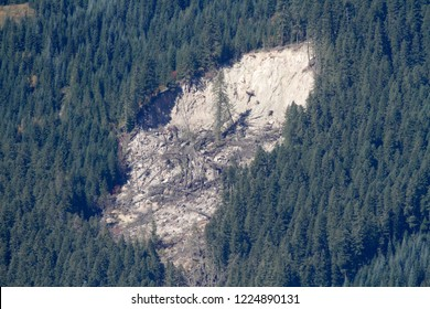 Trapper Slide, from Carpenter Mountain fire lookout, H.J. Andrews Experimental Forest, Willamette National Forest, Oregon, USA