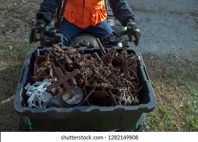 It's trapping season and the trapper is heading out with a container full of traps, chains and the necessary equipment for pest control.