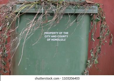 Trash Bin Container