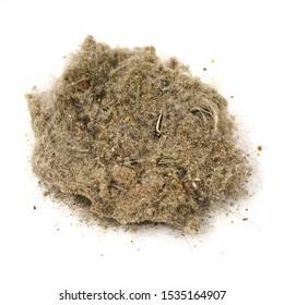 Trash, dust, dirt isolated on a white background closeup. texture of garbage from a vacuum cleaner