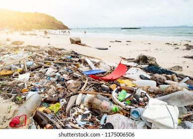 Trash on the Beach.dirty beach