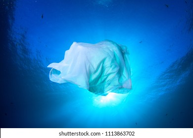 Trash plastic bag floating in the sea with sun behind