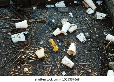 Trash pollutes a river. Styrofoam cups thrown into shore of a river is unsightly and disturbing.