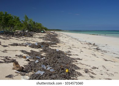 Trash tangled in seaweed mars an otherwise idyllic and pristine beach on an uninhabited island off Camaguey province, Cuba.