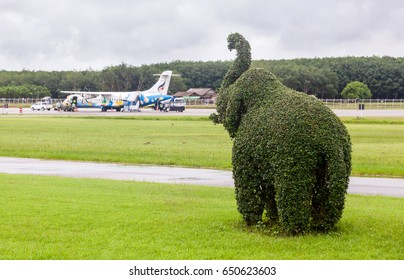 Trat Thailand 30 May 2017: tree in elephant show histrunk shape was showed near the Bangkok airways with ATR72-500 from Bangkok which parking on the Trat airport which many of tree near the airport