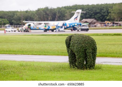 Trat Thailand 30 May 2017: 2 Tree on Elephants shape which stand up on the floor and stand up  was decorated near the Bangkok airways with ATR72-500 from Bangkok which parking on the Trat airport .