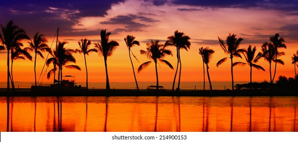Travel banner. Beach paradise sunset with tropical palm trees. Summer travel holidays vacation getaway colorful concept photo from sea ocean water at Big Island, Hawaii, USA.