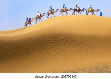 Travel with camel