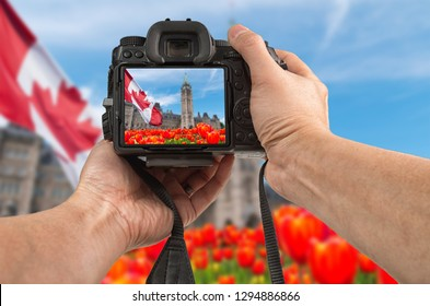 Travel to Canada phototography concept. Man's hands holding a DSLR camera taking picture of the Parliament of Canada