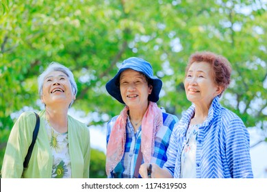 Travel and elderly women