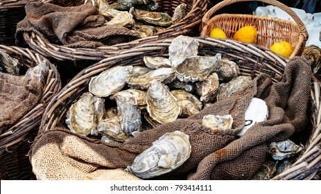 travel to France - fresh raw oysters on outdoor street market in Cancale town in Brittany in summer day