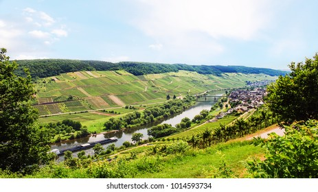 travel to Germany - panorama of valley of Mosel river in Cochem - Zell region on Moselle wine route in sunny summer day