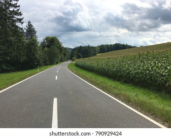 travel to Germany - road and vineyards along Mosel river in Cochem - Zell county on Moselle wine route in summer day Text on the road sign: town Zell Mosel , region Kaimt , county Cochem - Zell
