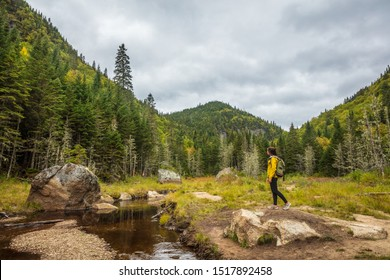 Travel hike forest nature hiker woman walking in canadian woods in fall autumn season, by beaver dam in Quebec National Park Parc de la Jacques Cartier, Canada destination.