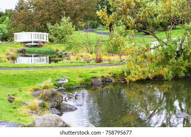 travel to Iceland - ponds in public family park in laugardalur valley of Reykjavik city in september