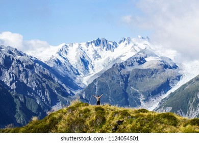 Travel New Zealand, Mount Fox. Scenic view of southern alps, mount cook and glaciers. Small person / tourist woman with hands up enjoying life. Outdoor/travel freedom content.