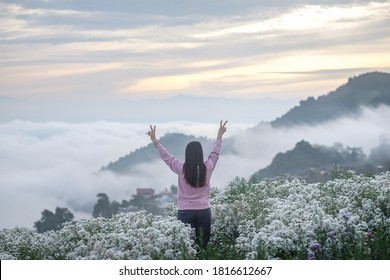 Travel and photography on the mountain in winter, Mae Rim District, Chiang Mai Province, Thailand