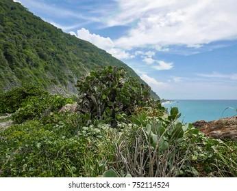 Travel photography - sea landscape next to Caracas (Venezuela).