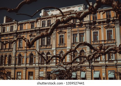 Travel to Ukraine. Odessa city. Building facade. Architecture background. Tourism concept. Tourist attraction. City toure. Dry Sophora japonica trees branches. Street view. Arch windows