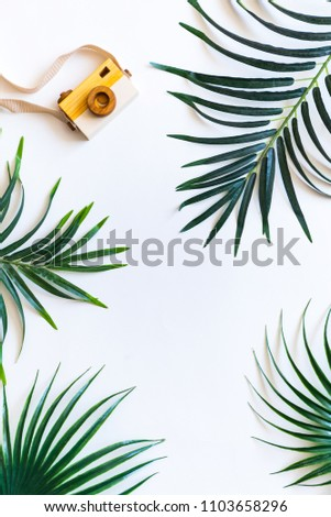 197dc208 Traveler accessories. Tropical palm leaf branches on white background with  copy space for text. Travel vacation concept. Summer background. Flat lay  ...