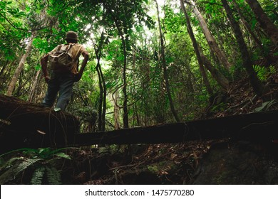 Traveler exploring jungle alone hiking with backpack adventure journey summer vacations traveling lifestyle weekend getaway in forest of Thailand