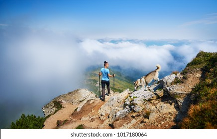 Traveler girl in sports clothes with dog and hiking sticks stands on the stone hillocks and looks at high mountain landscapes in the sunny day. Freedom concept.