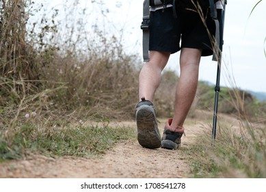 traveler hiker man with backpack hiking on mountain. leg of tourist backpacker with stick trekking in forest. travel lifestyle & summer vacation concept