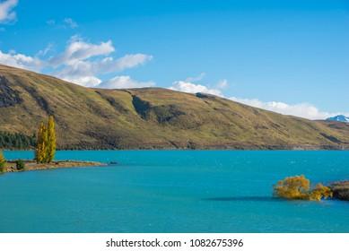 Traveler Lake Tekapo, South Island in new Zealand