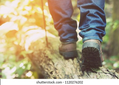 traveler tourist hiker close-up  shoes boots and hiking sticks poles. man tourist hikers walking in forest  steps trail on a log timber with sunshine. travel concept.