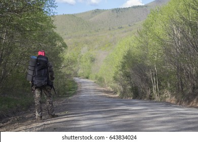 A traveler or a tourist with a large backpack and rug goes along the road near the forest and tries to catch a car (hitch-hiking)