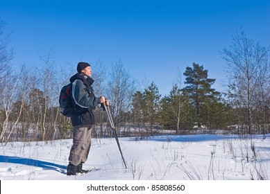 traveler in a winter forest