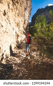 Traveler woman climbs along narrow mountain gorge leading to a blue sky among lush pines - adventure travel along Lycian way, Turkey. Low point of shooting, back view, vintage image.