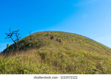 Travelers with backpacks treking and hiking on mountains on summer trip. Travel lifestyle concept.