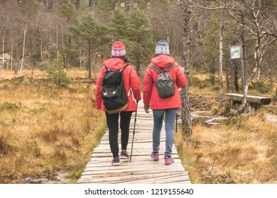The travelers treking on the wooden path, Preikestolen, Ryfylke, Norway.