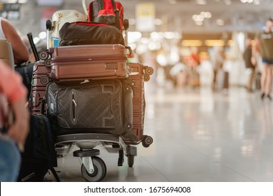 Travelers are walking to drag luggage in modern airport terminal to travel to new places. Rear view. Copy space. Luggage, traveler, travel, airport, walking, holiday concept.