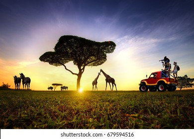 traveling adventure in the field of safari with animals wildness