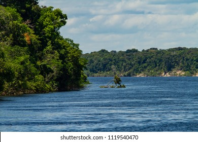 Traveling through 'Rio Negro' river by boat. Amazon rainforest. Sunny day with clouds, Amazonas / Brazil