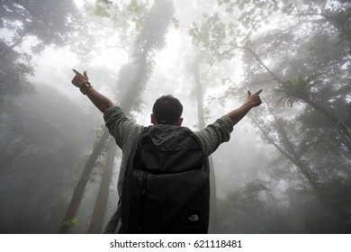 Traveller in the forest and fog in dark forest path background, natural background