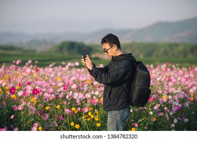 Traveller taking photo of the cosmos park, landscape by smartphone