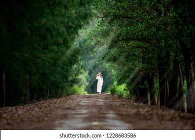 A traveller woman walks in the middle walk way of green pine Forrest in summer in Sakonnakhon,Thailand