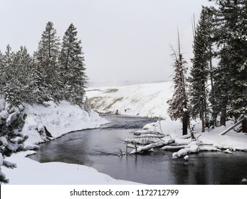 Travelling through a frozen landscape of trees, snow and rivers in Yellowstone National Park, USA