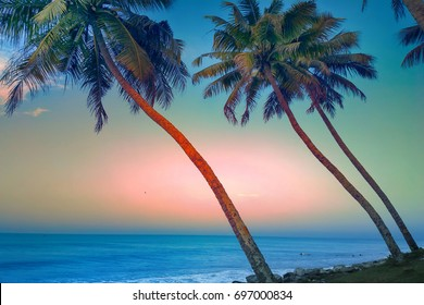 Travel-photo, romantic journey. Journey to tropical seas - tropical beach with coconut palm at sunset,  calm warm day. Palm trees leaned over quiet water, thalassotherapy