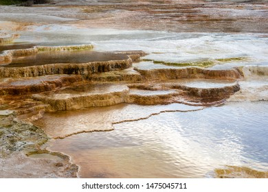 Travertine terrace in the morning light at Mammoth Hot Springs in Yellowstone National Park, Wyoming