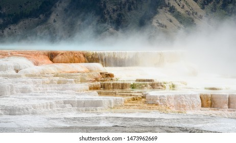 Travertine Terraces, Mammouth Hot Springs, Yellowstone National Park. Hot water, flowing over the terraces, deposits pure white travertine and mineral colors.