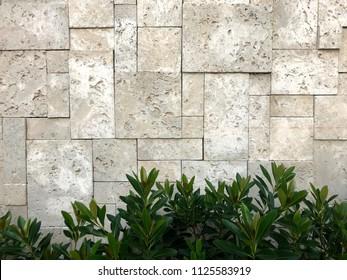 Travertine,travertine tiles,travertine texture.